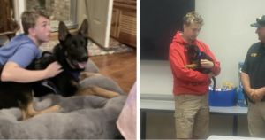 Officers Gift Teen A Puppy After He Witnesses His Dog's Tragic Death