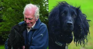 Dog Stolen Along With Car Is Reunited With Family After Search