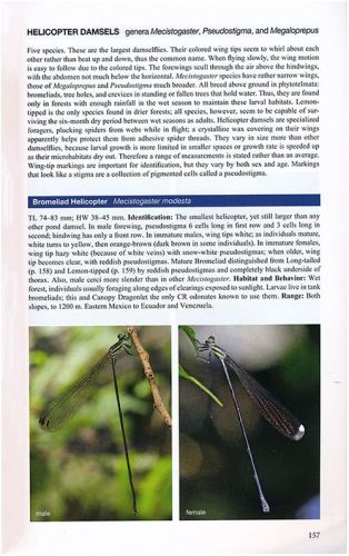 Dragonflies and Damselflies of Costa Rica: A Field Guide-A Book Review