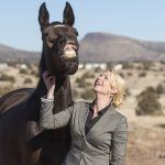 Equine Behavior, Needs, and Mental Health in a Human-Centered World