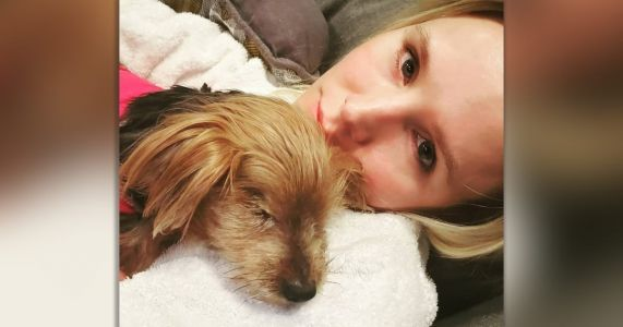 Kristen Bell Says Sad Goodbye To Her Senior Dog, Barbara