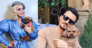 Orlando Bloom's Love For Late Dog May Be Causing Problems With Fiance Katy Perry