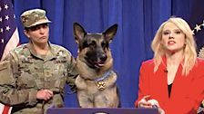 'SNL's' Syria Hero Dog Apologizes For Humping Legs Without Consent