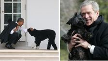 Why Do We Expect Presidents To Own Dogs?