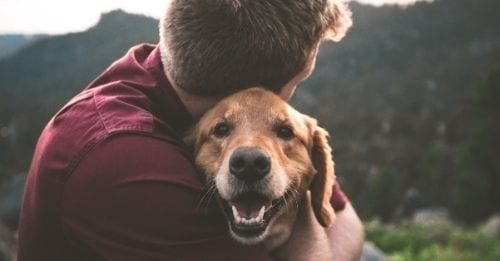 Man Takes To Reddit After Girlfriend Storms Out Of House When He Comforts His Dog With PTSD