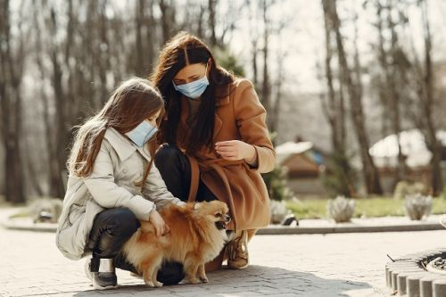 Is it Safe to Travel with Your Dog During the Coronavirus Crisis?