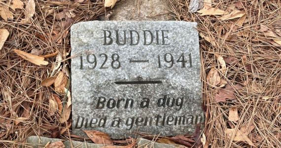 "80-Year-Old Gravestone Honors Dog Who ""Died A Gentleman"""
