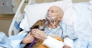 Vietnam Veteran In Hospice Care Is Reunited With His Dog One Last Time