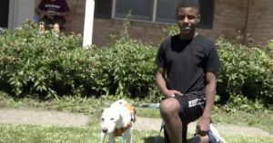 13-Year-Old Rescues Missing Senior Dog & Helps Him Find His Way Back Home