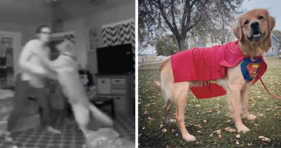 Remarkable Dog Saves Tipsy Human From Potential Dangerous Fall