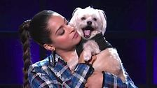 Lilly Singh Has Her Dog As A Guest And He Steals The Show