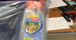 Hartz Flea & Tick Products Continue To Cause Animal Deaths