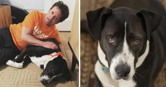 "Michael J. Fox's ""Wonder Dog"" Passes Away After 12 Years Of Love & Support"