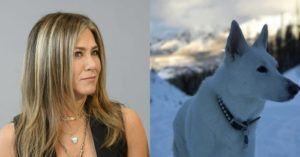 Jennifer Aniston Wears Special Necklace to Honor Her Late Rescue Dog