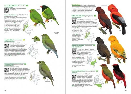 Hilty's Birds of Colombia field guide review