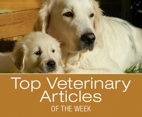 Top Veterinary Articles of the Week:
