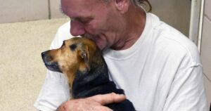 Facing Euthanasia, Local Shelter Offers Dog Dad Hope For His Injured Pup