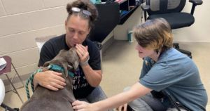 Dog Rescue Founder Reunites With Missing Pit Bull After 8 Years Apart