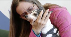 Dog Lost For 12 Years Finally Returns To Her Loving Home