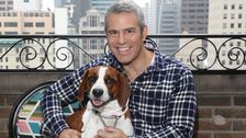 Andy Cohen Had To Rehome His Dog, Wacha: 'A Piece Of My Heart Is Gone'