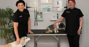 """Two Friends Open An Innovative """"Doggie Health Hub"""" Together"""