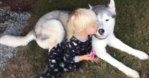 Speech Delayed Little Girl And Her Dog Have Lengthy Conversations