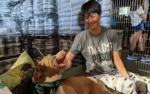 Maui Humane Society Hosts Their First Shelter Slumber Party!