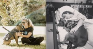 Service Dog Refuses to Leave Her Mom's Side After Saving Her Life