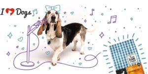 Enter To Win A Chance For A Months Supply Of Free Food For Your Dog. And Your Favorite Shelter!