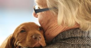 Scientist Says Dogs Hate Hugs. Another Says He's Wrong. Here's Why
