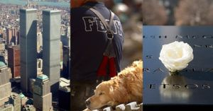 These Dogs Played A Key Role In The Rescue Efforts In The Days Following 9/11