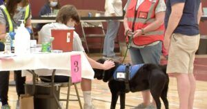 Therapy Dog Calms Anxious Teens Getting Their Covid Vaccines
