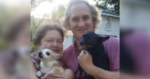 You Helped This Surrendered Chihuahua Find The Perfect Home!