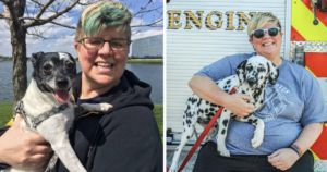 Firefighter And Her Dog Both Survive Severe Car Crashes
