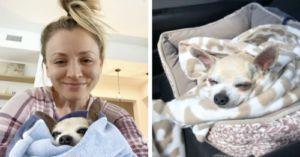 Kaley Cuoco Fosters Senior Dog During COVID Quarantine
